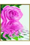 Раскраска Schipper Розовая роза