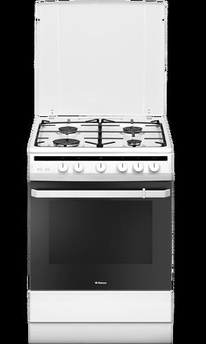 Газовая плита Hansa FCGW61101 белый