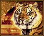Раскраска Schipper Тигр