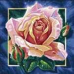 Раскраска Schipper Роза